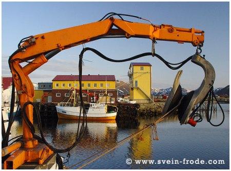 Kaia på Nordmela (mai 2003). Klikk på bildet for større versjon.